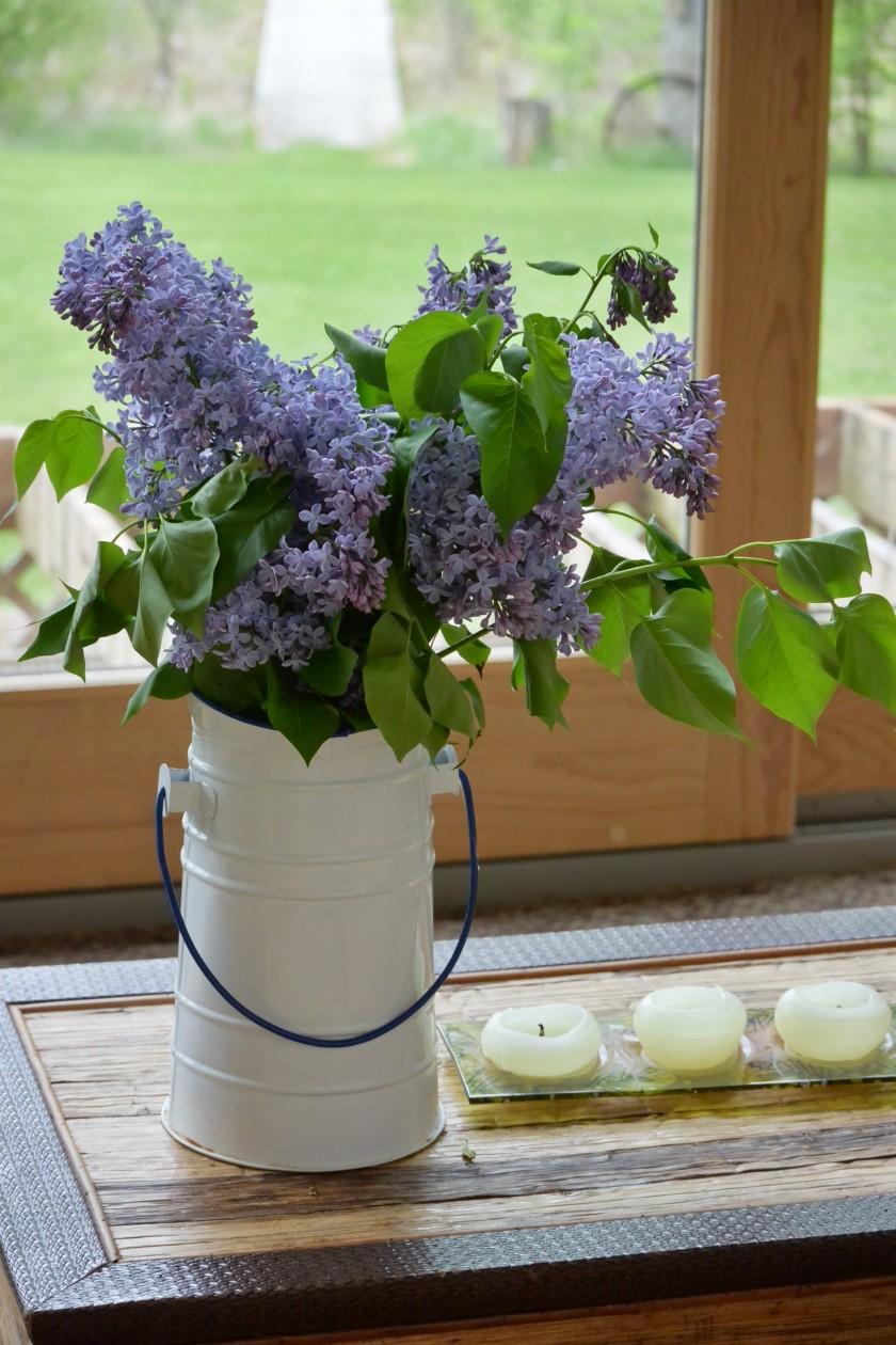 lilacs | http://juliesaffrin.com